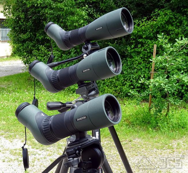 Swarovski ATX 65 mm Spektiv Set 25-60x APO, Schrägeinblick, incl. Zoom-Okular