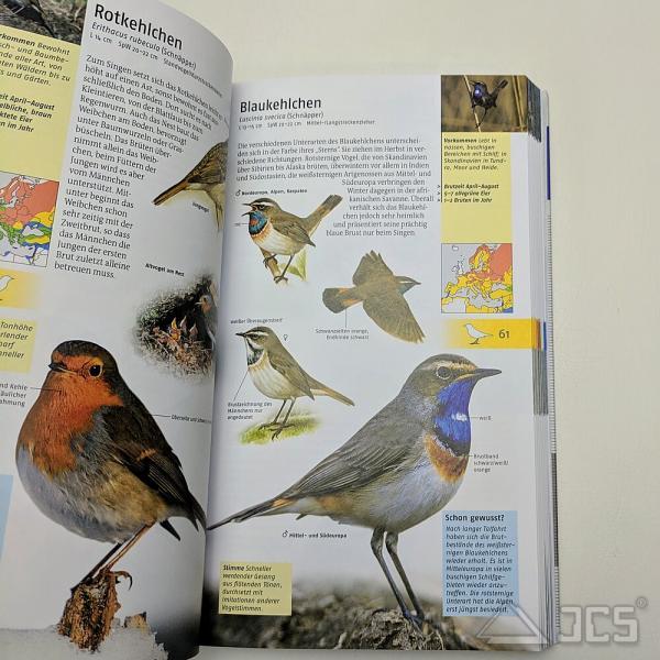 Welcher Vogel ist das? Über 440 Vogelarten sicher bestimmen, Volker Dierschke